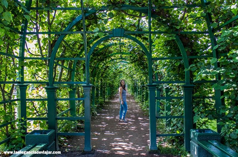 Rincones en los Jardines Superiores de Peterhof