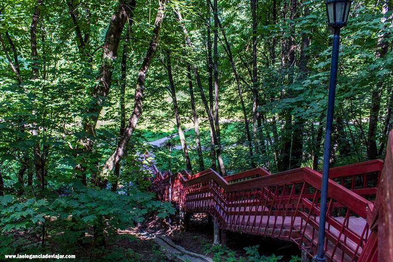Naturaleza en la Aldea de Kolomenskoye