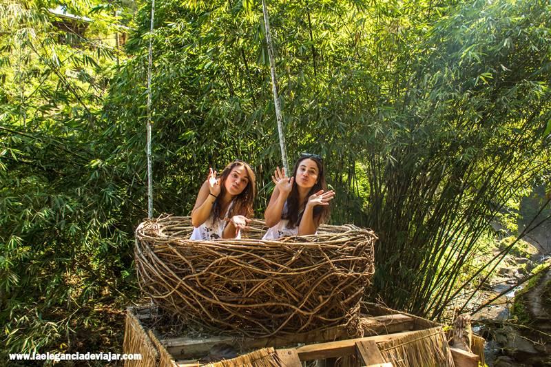Nidos perdidos en Bali