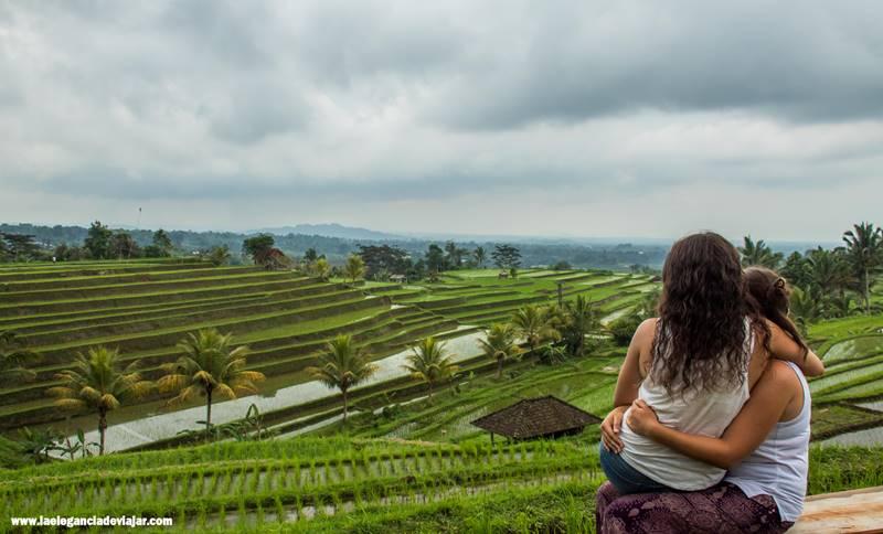 Terrazas de arrozJatiluwih