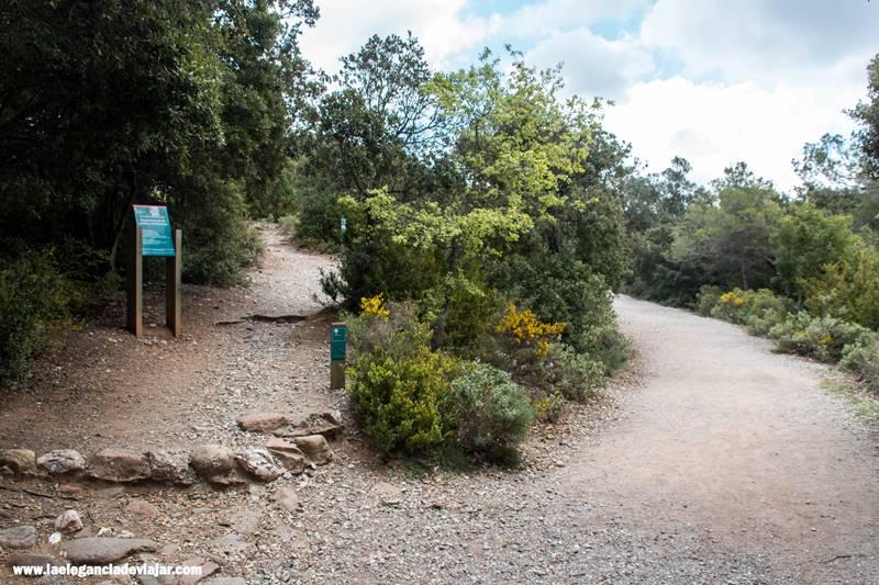 Primera bifurcación. El camino de la izquierda llega al Montcau