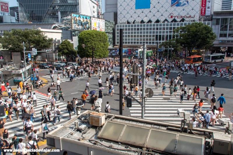 Cruce de Shibuya desde el Stabucks