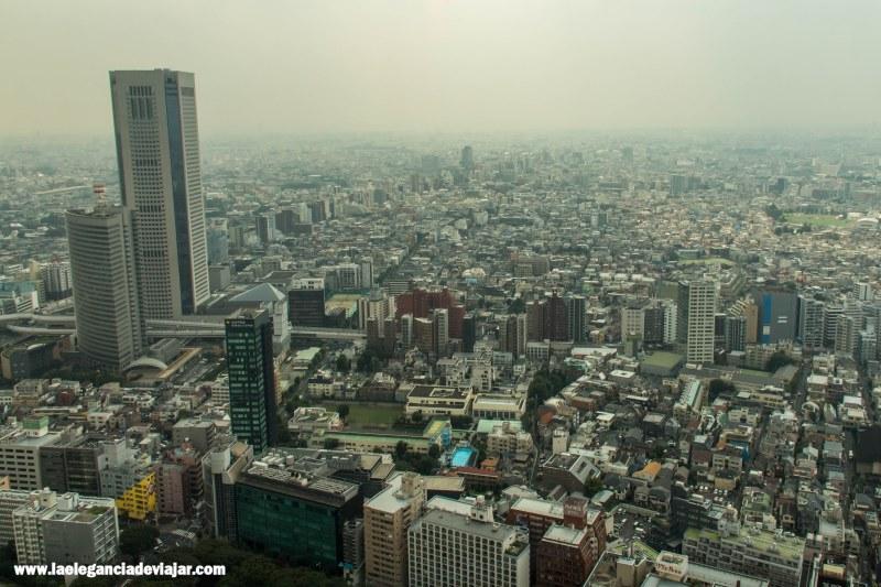 Vistas desde la Torre del Gobierno Metropolitano de Tokio