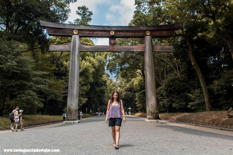 Torii del Santuario Meiji